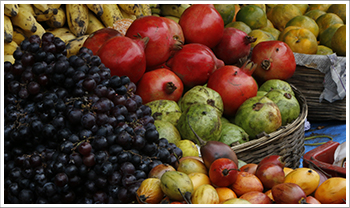 Public Voice NY nonprofit marketing services: an image of lush fruit at a market symbolizes the impact of effective nonprofit content marketing.