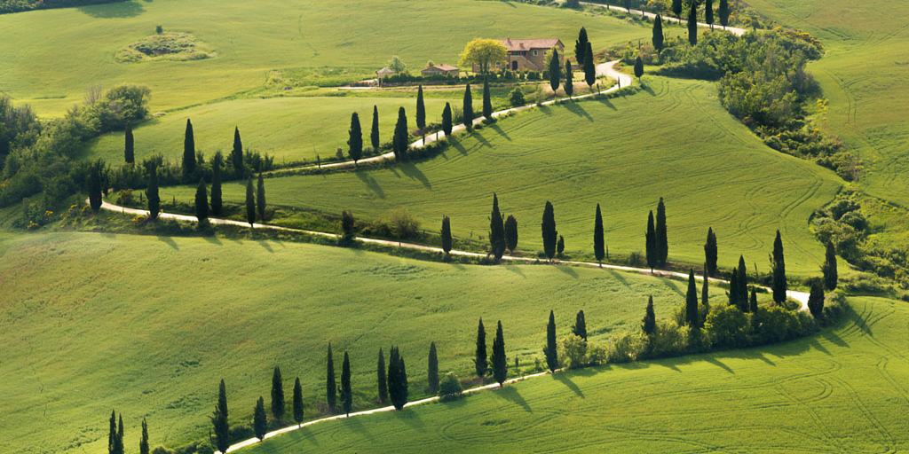 A photo of a road winding up green hill symbolizes the value of the marketing fundraising alignment guide to smooth the journey from stranger to donor.